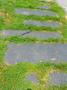 Grassy Slate Sidewalk - Source: Wiki Commons
