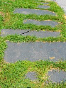 Grassy Slate Sidewalk - Source: Wiki Commons